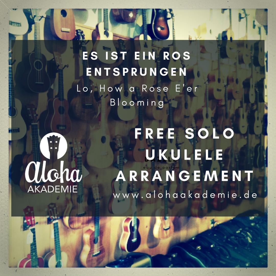 Ukulele Solo Jazz Xmas | Aloha Akademie | Ukulele Coaching